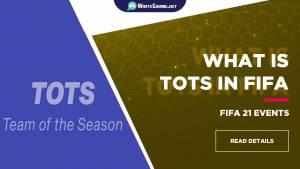¿Qué es TOTS en FIFA?