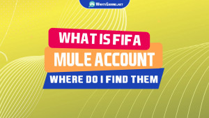 What is a FIFA Mule Account